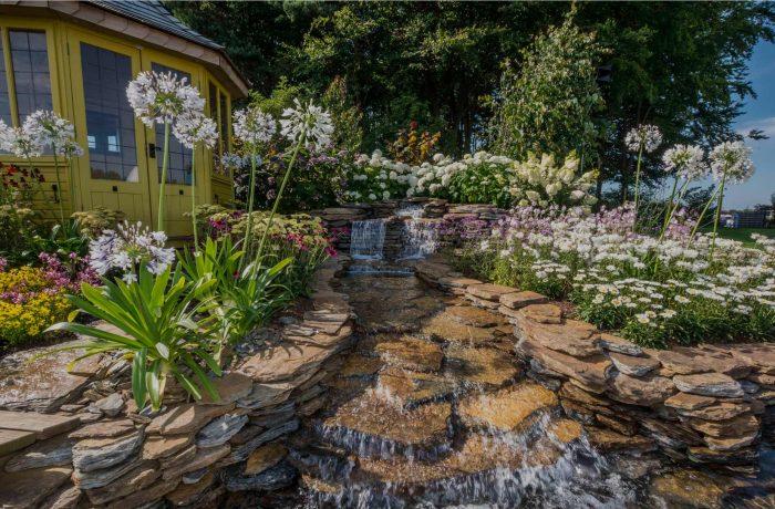 RHS Tatton Park Flower Show 2016